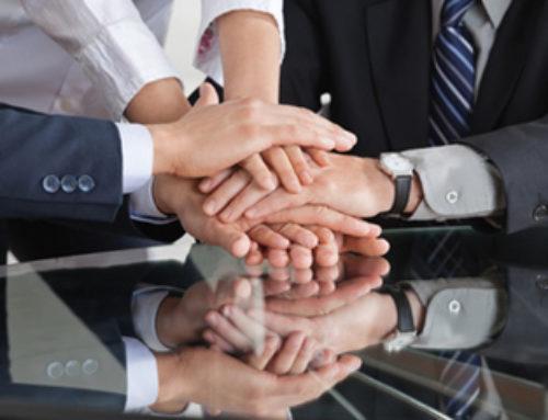 Partnerschaften & Links